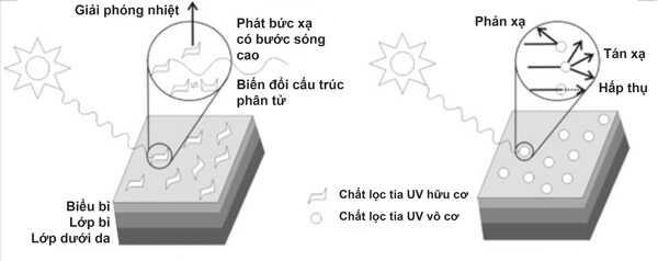Cơ chế hoạt động của các chất lọc tia uv hữu cơ và vô cơ