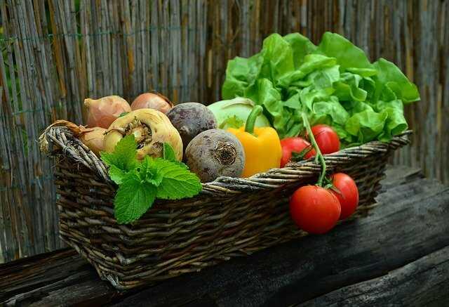 Rau quả chứa nhiều dưỡng chất tốt cho tóc