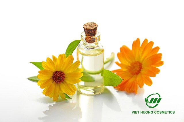 Gia công mỹ phẩm chiết xuất hoa cúc
